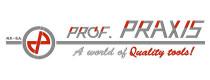 Prof-Praxis